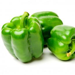 Poivron vert - 500g