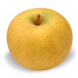 Pomme Chanteclerc 80/85 - 1kg