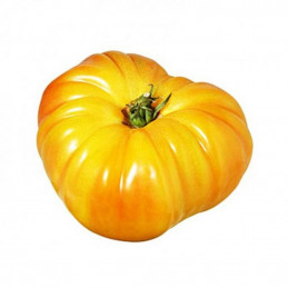 Tomate Ananas - 500g