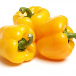 Poivron jaune - 500g