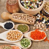 Légumineuses et céréales